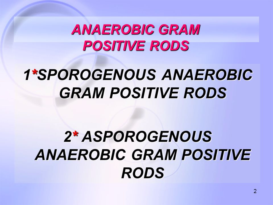 2 ANAEROBIC GRAM POSITIVE RODS 1*SPOROGENOUS ANAEROBIC GRAM POSITIVE RODS 2* ASPOROGENOUS ANAEROBIC GRAM POSITIVE RODS