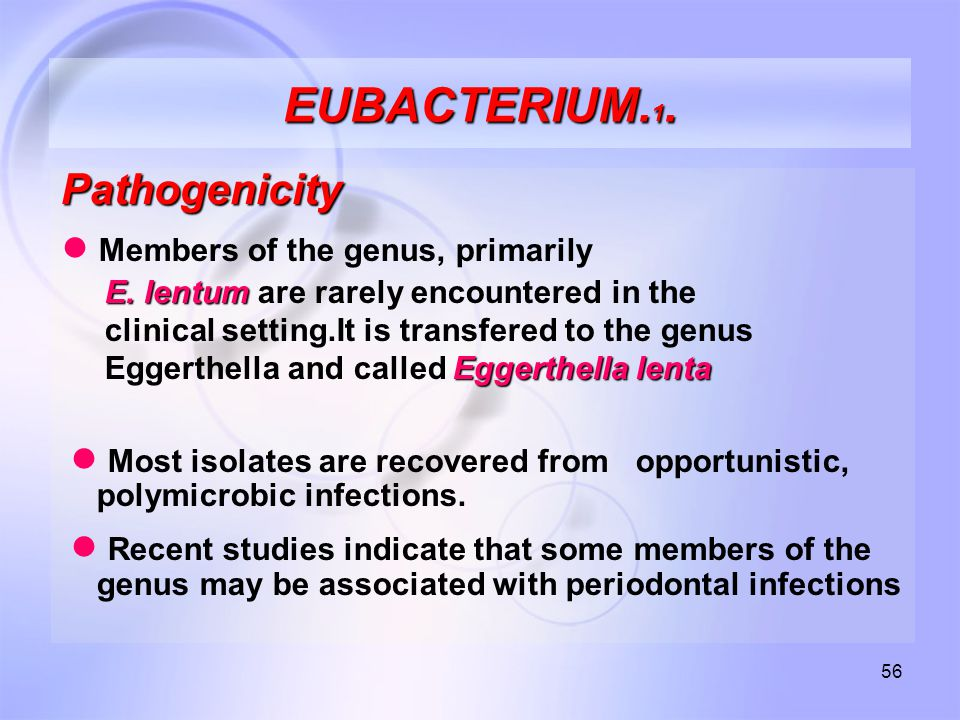 56 EUBACTERIUM. 1. Pathogenicity ● Members of the genus, primarily E.