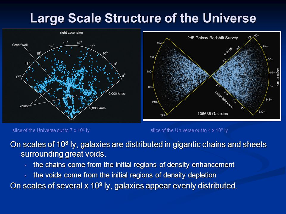 Large Scale Structure of the Universe On scales of 10 8 ly, galaxies are distributed in gigantic chains and sheets surrounding great voids.