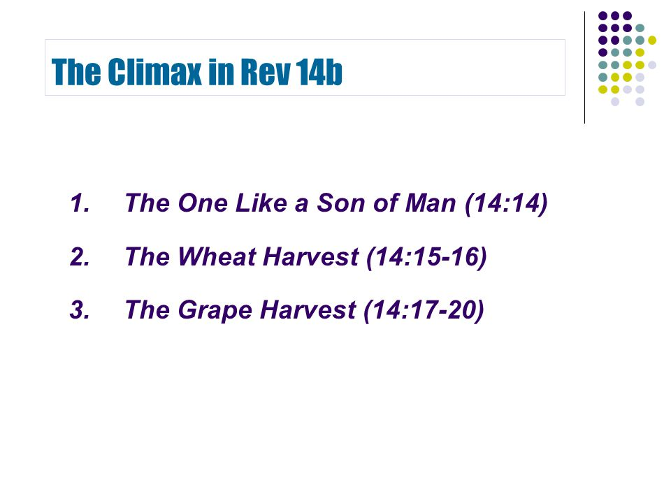 The Climax in Rev 14b 1.The One Like a Son of Man (14:14) 2.The Wheat Harvest (14:15-16) 3. The Grape Harvest (14:17-20)