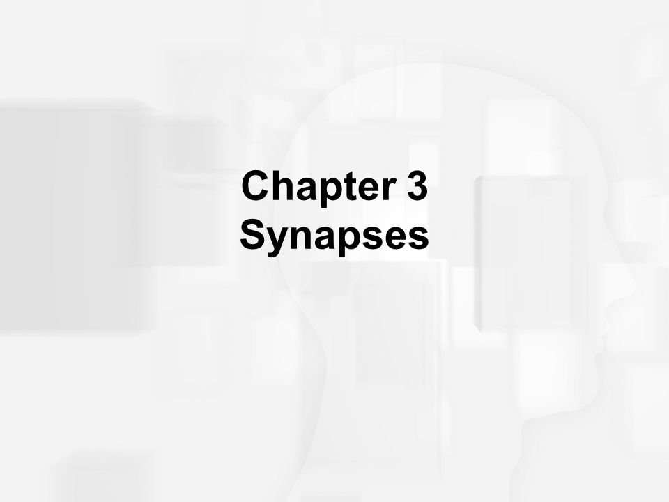 Synaptic Transmission Overview Link to Animated Video