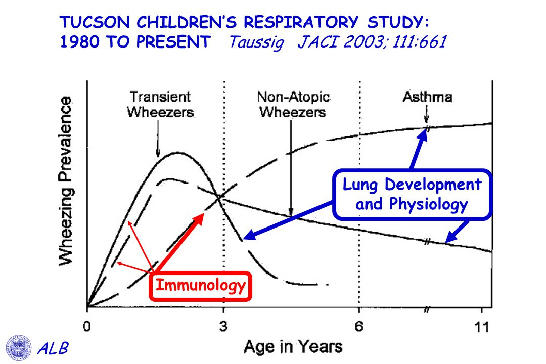 TUCSON CHILDREN'S RESPIRATORY STUDY: 1980 TO PRESENT Taussig JACI 2003; 111:661 ALB Lung Development and Physiology Immunology
