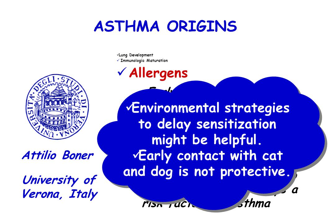 ASTHMA ORIGINS Lung Development Immunologic Maturation Allergens University of Verona, Italy Attilio Boner Early sensitization to allergens is a risk