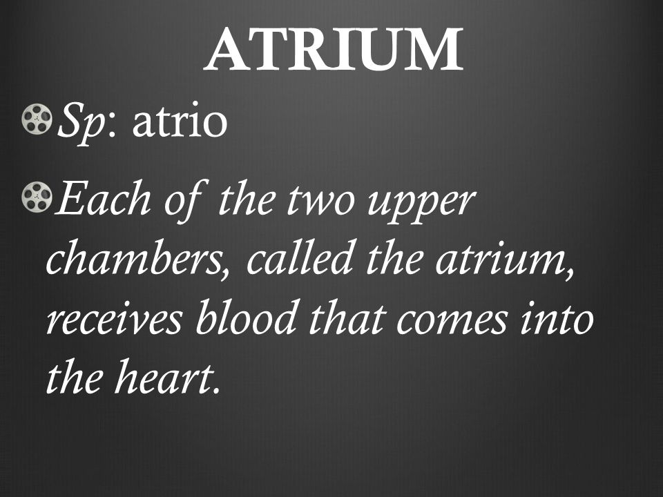 ATRIUM Sp : atrio Each of the two upper chambers, called the atrium, receives blood that comes into the heart.