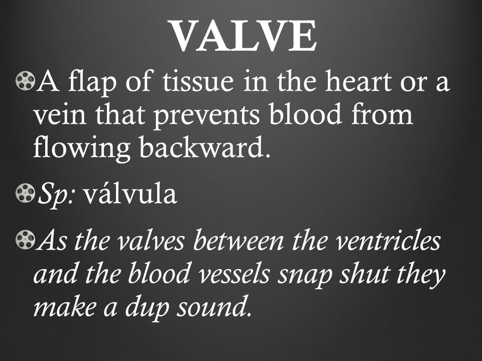 VALVE A flap of tissue in the heart or a vein that prevents blood from flowing backward.