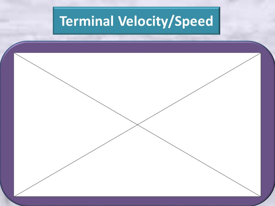 Terminal Velocity/Speed