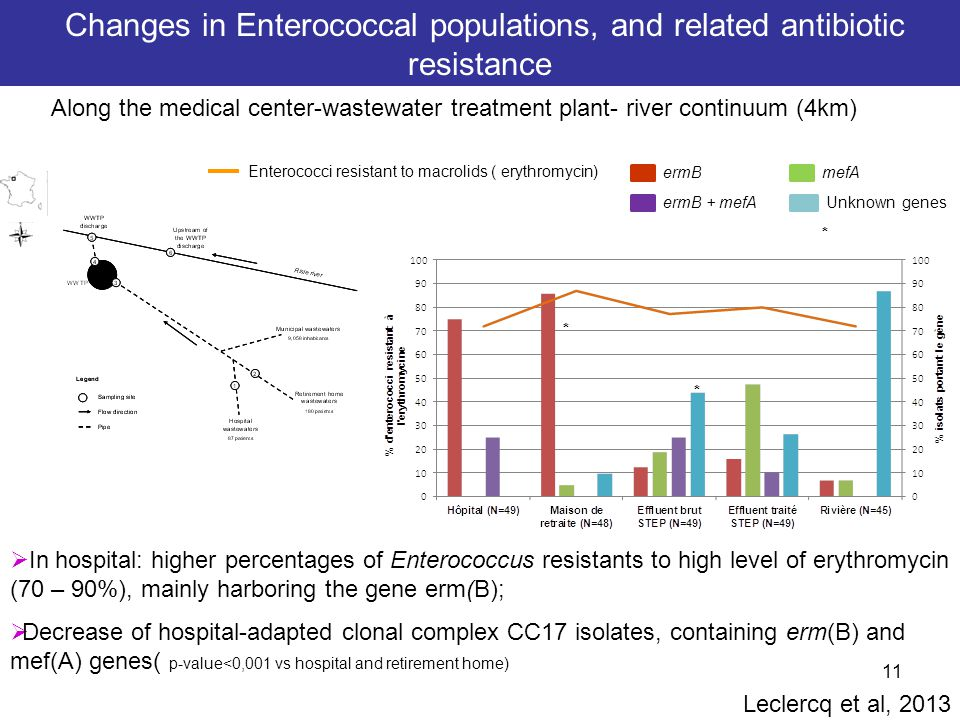 11  In hospital: higher percentages of Enterococcus resistants to high level of erythromycin (70 – 90%), mainly harboring the gene erm(B);  Decrease