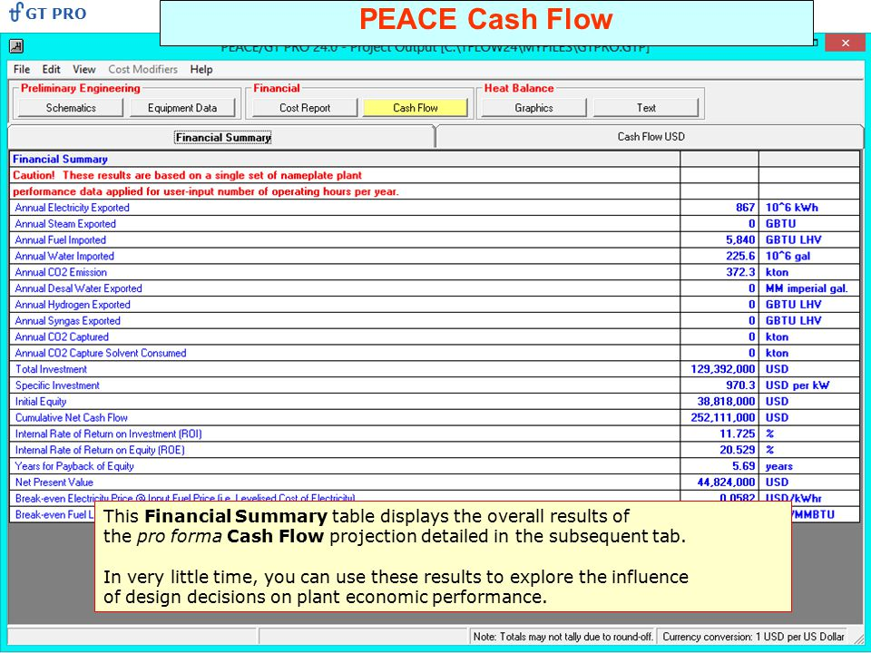 PEACE Cash Flow This Financial Summary table displays the overall results of the pro forma Cash Flow projection detailed in the subsequent tab. In ver