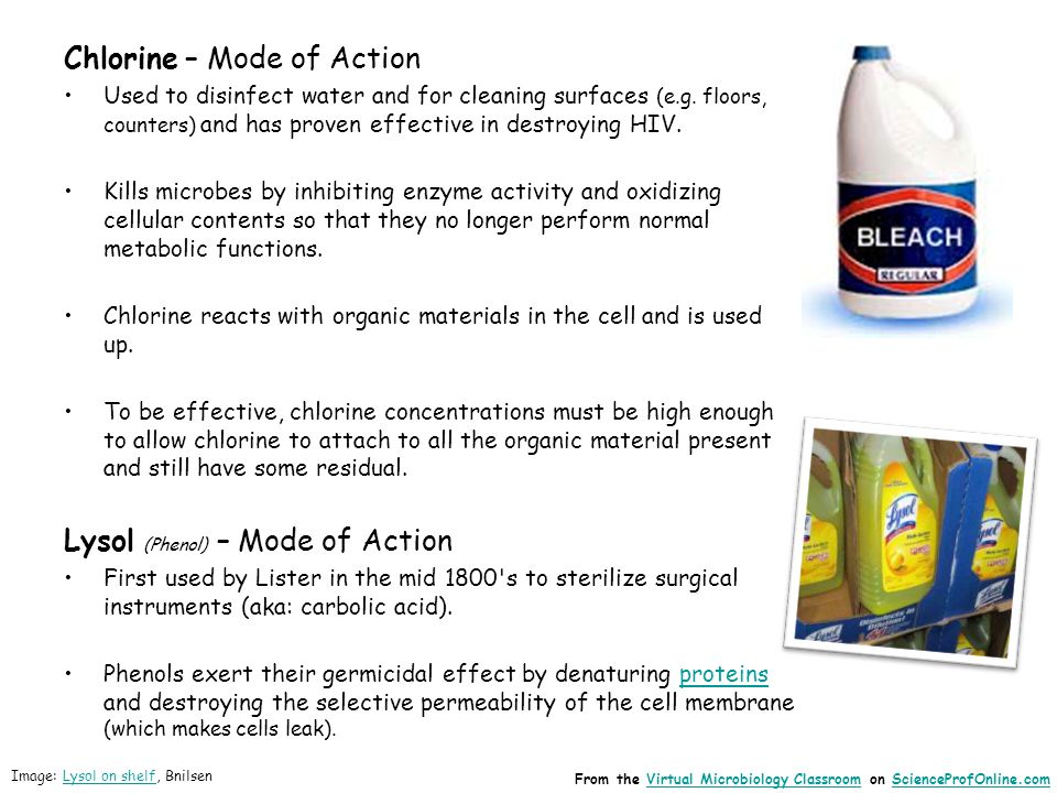 Chlorine – Mode of Action Used to disinfect water and for cleaning surfaces (e.g.