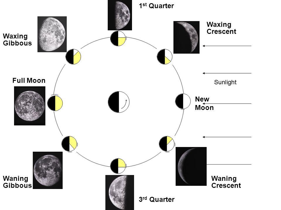 Crescent Gibbous 1 st Quarter Full Moon 3 rd Quarter New Moon Waxing Waning