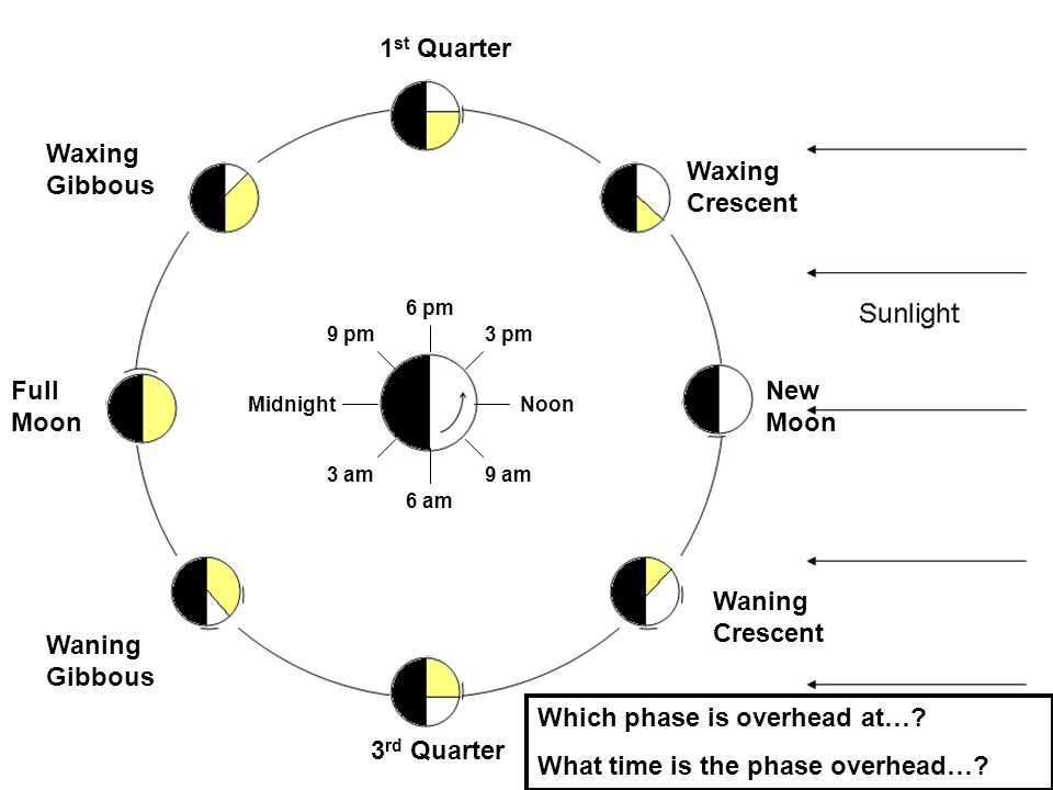 1 st Quarter Full Moon 3 rd Quarter New Moon Waxing Crescent Waxing Gibbous Waning Gibbous Waning Crescent NoonMidnight 3 pm 6 pm 9 pm 9 am 6 am 3 am Which phase is overhead at….