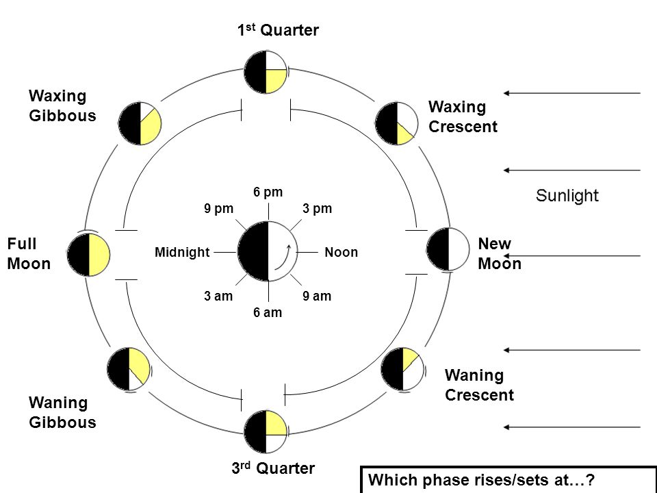 1 st Quarter Full Moon 3 rd Quarter New Moon Waxing Crescent Waxing Gibbous Waning Gibbous Waning Crescent NoonMidnight 3 pm 6 pm 9 pm 9 am 6 am 3 am Which phase rises/sets at…?