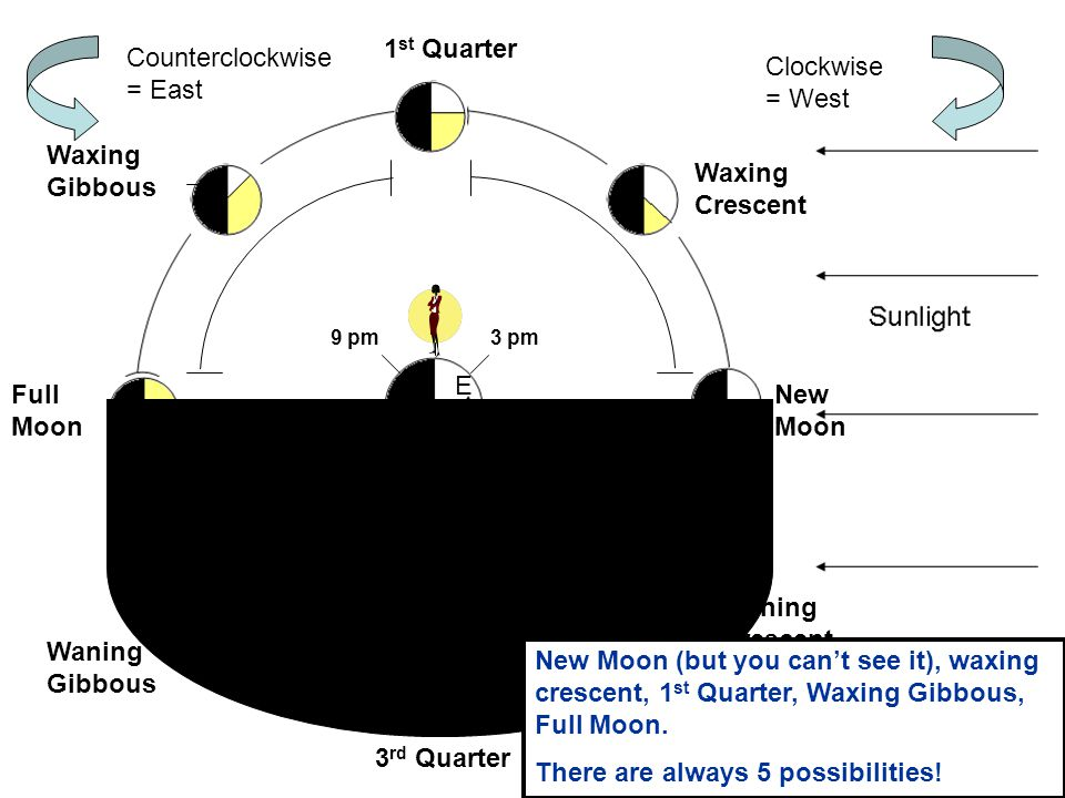 1 st Quarter Full Moon 3 rd Quarter New Moon Waxing Crescent Waxing Gibbous Waning Gibbous Waning Crescent NoonMidnight 3 pm 6 pm 9 pm 9 am 6 am 3 am W E Clockwise = West Counterclockwise = East If you went out at 6 pm every night for a month, which phases would you see.