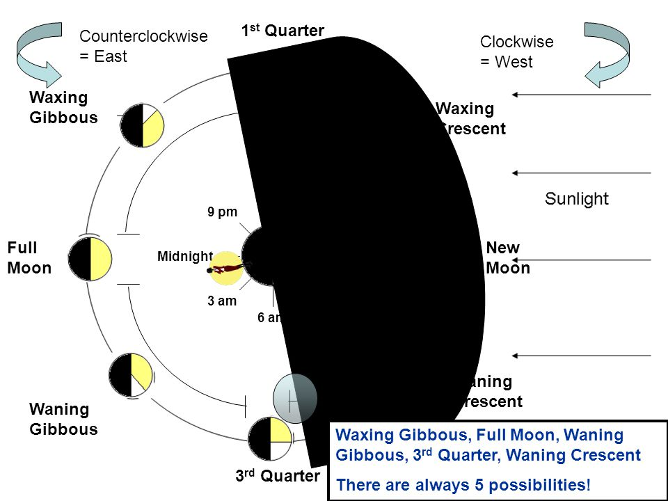 1 st Quarter Full Moon 3 rd Quarter New Moon Waxing Crescent Waxing Gibbous Waning Gibbous Waning Crescent NoonMidnight 3 pm 6 pm 9 pm 9 am 6 am 3 am W E Clockwise = West Counterclockwise = East If you went out at 1 am every night for a month, which phases would you see.