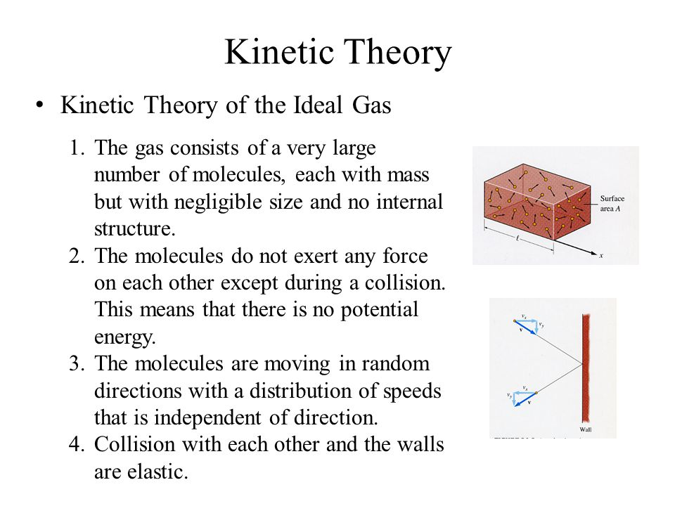 Kinetic Theory of the Ideal Gas 1.The gas consists of a very large number of molecules, each with mass but with negligible size and no internal structure.