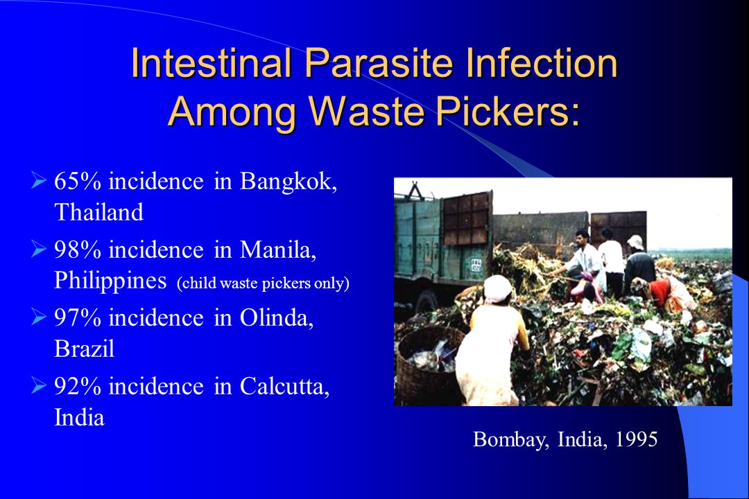 Intestinal Parasite Infection Among Waste Pickers:  65% incidence in Bangkok, Thailand  98% incidence in Manila, Philippines (child waste pickers on