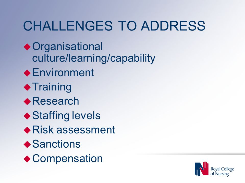 CHALLENGES TO ADDRESS u Organisational culture/learning/capability u Environment u Training u Research u Staffing levels u Risk assessment u Sanctions u Compensation