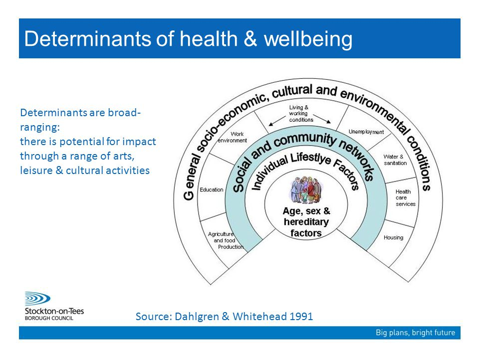 Determinants of health & wellbeing Source: Dahlgren & Whitehead 1991 Determinants are broad- ranging: there is potential for impact through a range of arts, leisure & cultural activities