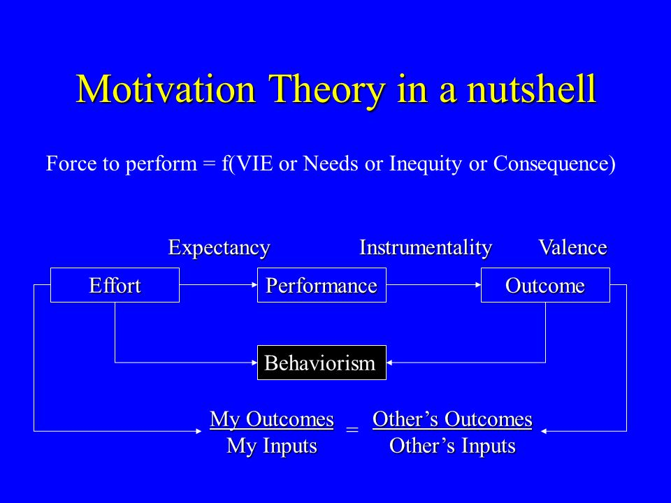 Motivation Theory in a nutshell PerformanceOutcomeEffort My Outcomes My Inputs Other's Outcomes Other's Inputs ExpectancyInstrumentalityValence Behavi