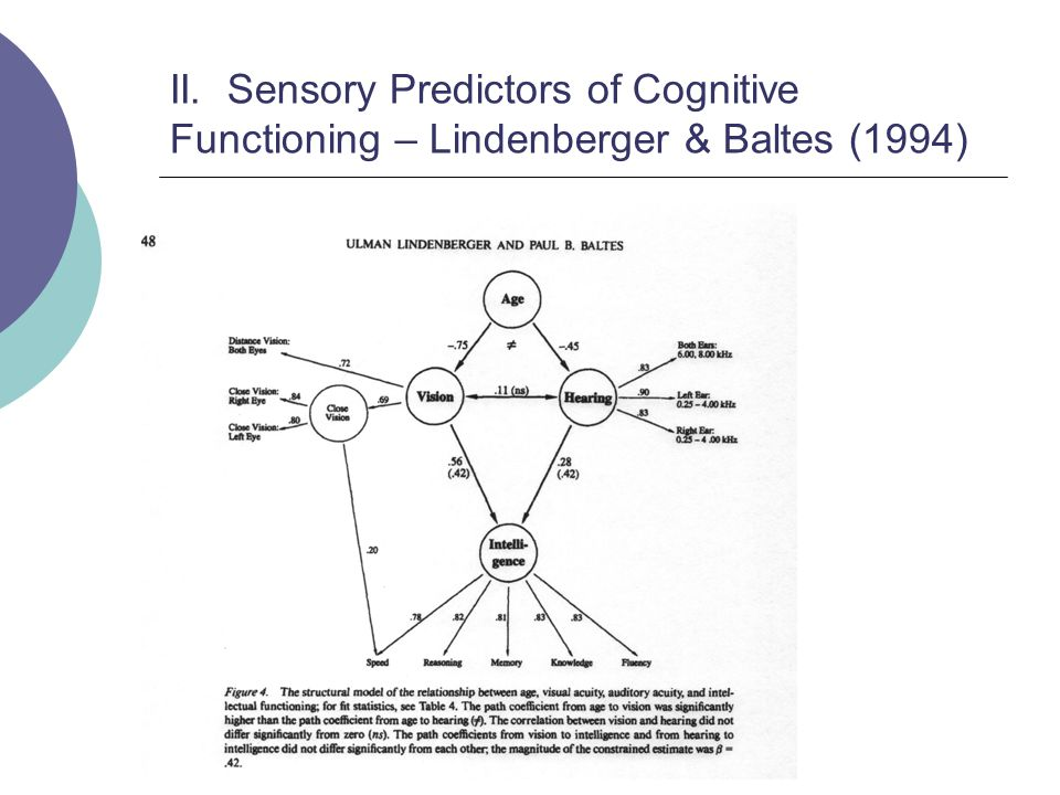 II. Sensory Predictors of Cognitive Functioning – Lindenberger & Baltes (1994)