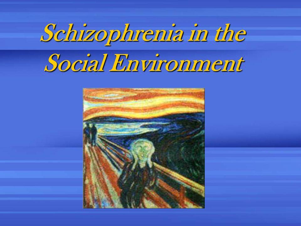 Schizophrenia in the Social Environment