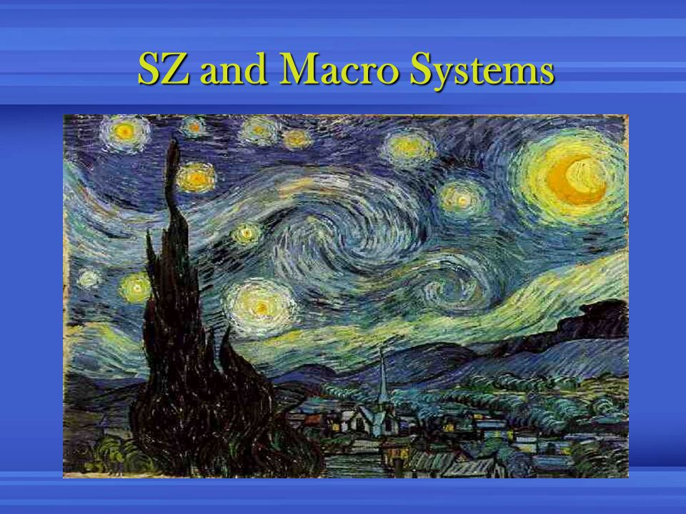 SZ and Macro Systems