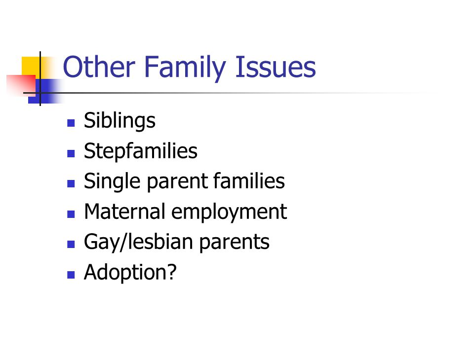 Other Family Issues Siblings Stepfamilies Single parent families Maternal employment Gay/lesbian parents Adoption?