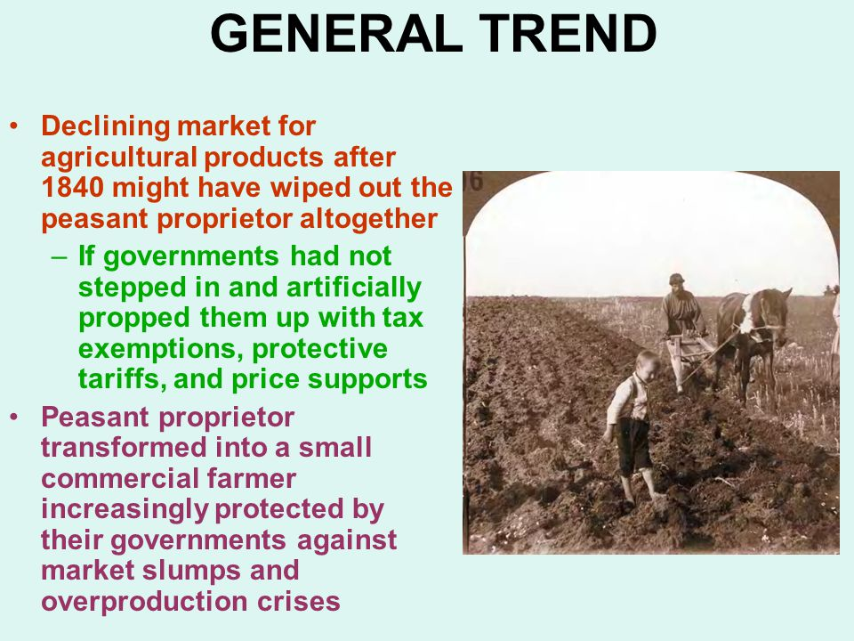 GENERAL TREND Declining market for agricultural products after 1840 might have wiped out the peasant proprietor altogether –If governments had not stepped in and artificially propped them up with tax exemptions, protective tariffs, and price supports Peasant proprietor transformed into a small commercial farmer increasingly protected by their governments against market slumps and overproduction crises