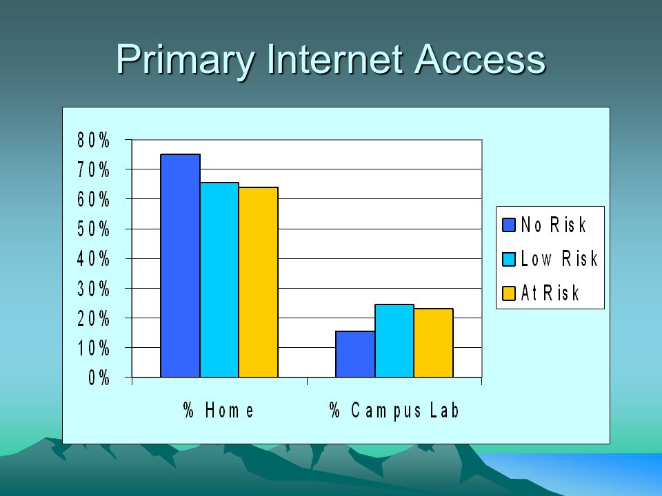 Primary Internet Access