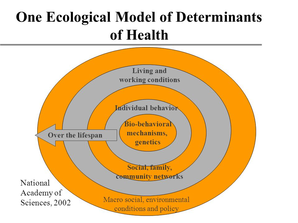 One Ecological Model of Determinants of Health Bio-behavioral mechanisms, genetics Individual behavior Macro social, environmental conditions and policy Living and working conditions Social, family, community networks Over the lifespan National Academy of Sciences, 2002