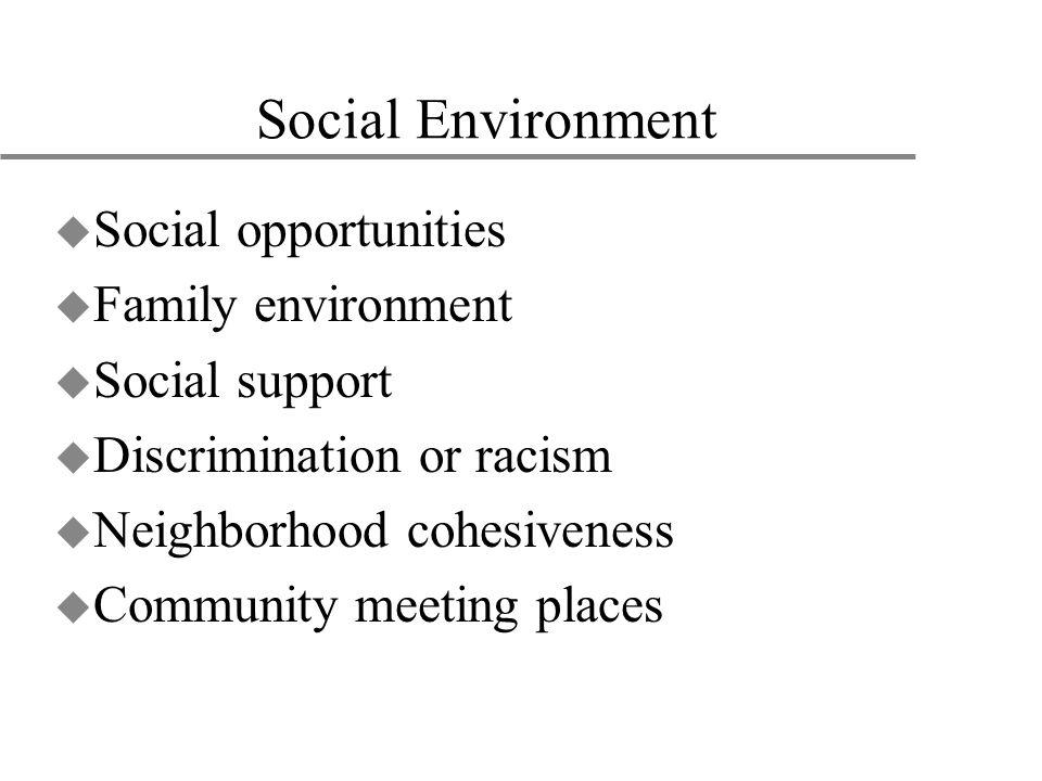 Social Environment u Social opportunities u Family environment u Social support u Discrimination or racism u Neighborhood cohesiveness u Community mee