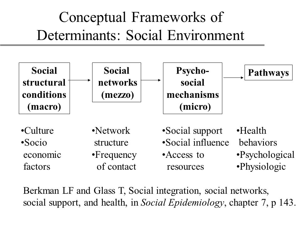 Conceptual Frameworks of Determinants: Social Environment Berkman LF and Glass T, Social integration, social networks, social support, and health, in Social Epidemiology, chapter 7, p 143.