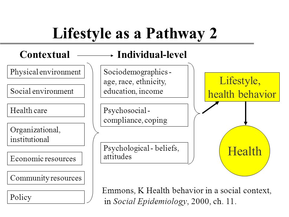 Lifestyle as a Pathway 2 Psychosocial - compliance, coping Health care Sociodemographics - age, race, ethnicity, education, income Physical environment Social environment Psychological - beliefs, attitudes ContextualIndividual-level Organizational, institutional Economic resources Community resources Emmons, K Health behavior in a social context, in Social Epidemiology, 2000, ch.