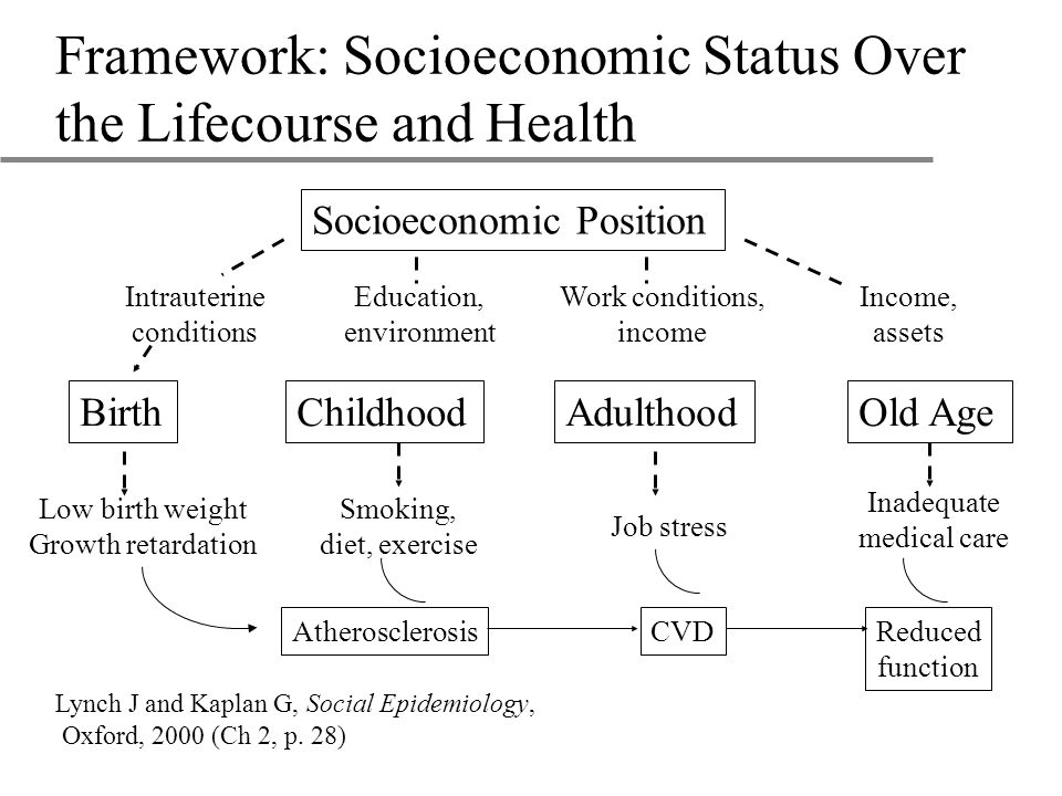 Framework: Socioeconomic Status Over the Lifecourse and Health Lynch J and Kaplan G, Social Epidemiology, Oxford, 2000 (Ch 2, p.
