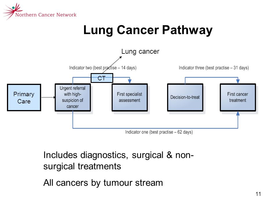 11 Includes diagnostics, surgical & non- surgical treatments All cancers by tumour stream Lung Cancer Pathway CT Lung cancer Primary Care
