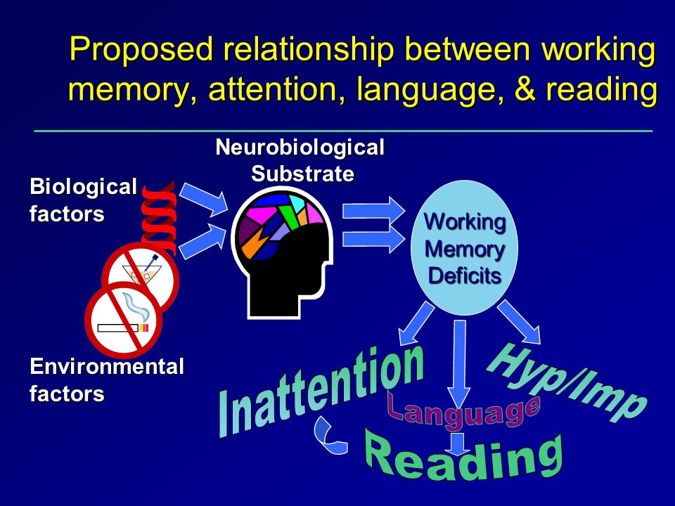 Proposed relationship between working memory, attention, language, & reading Biologicalfactors Neurobiological Substrate Substrate Working Memory Deficits Environmental factors