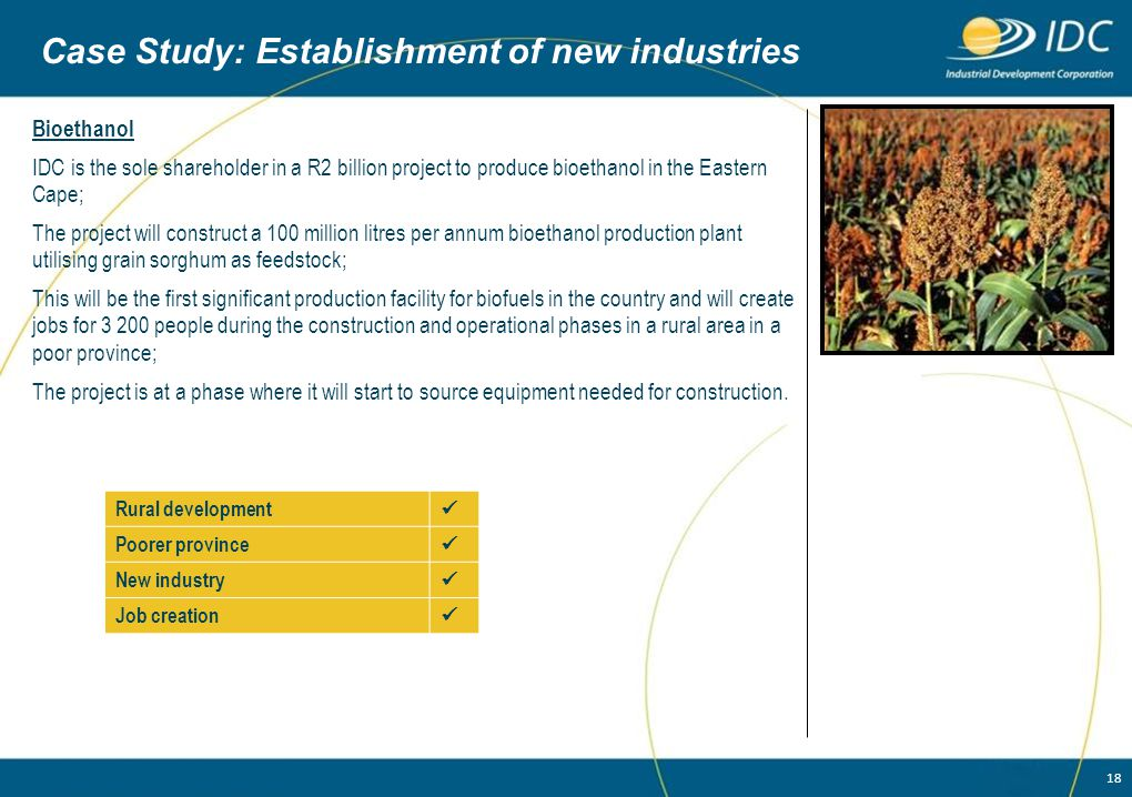 18 Case Study: Establishment of new industries Bioethanol IDC is the sole shareholder in a R2 billion project to produce bioethanol in the Eastern Cap