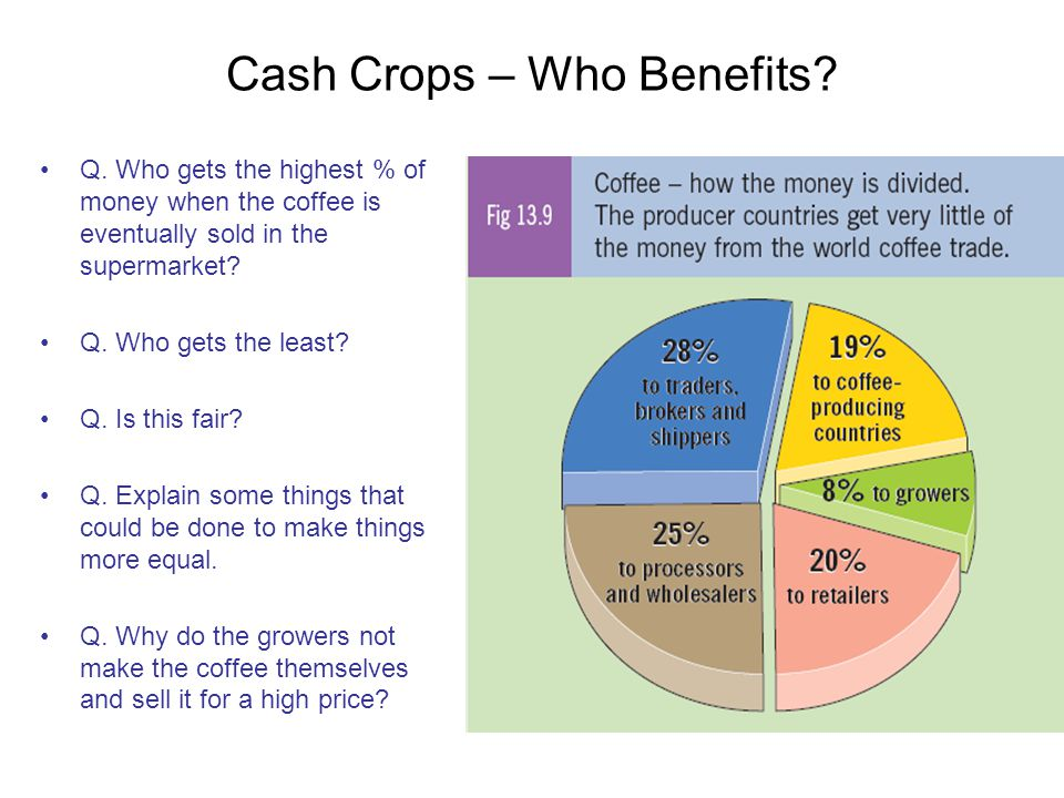 Cash Crops – Who Benefits? Q. Who gets the highest % of money when the coffee is eventually sold in the supermarket? Q. Who gets the least? Q. Is this