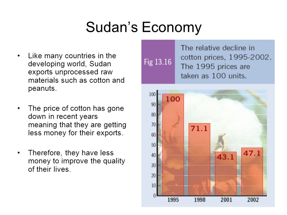 Sudan's Economy Like many countries in the developing world, Sudan exports unprocessed raw materials such as cotton and peanuts. The price of cotton h