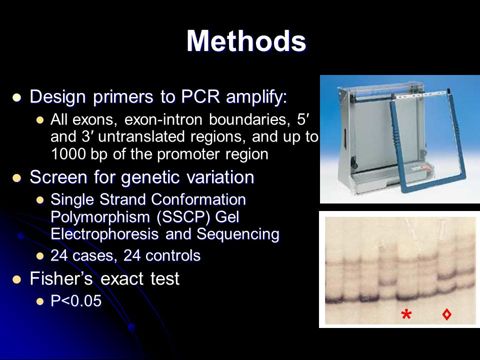 Methods Design primers to PCR amplify: Design primers to PCR amplify: All exons, exon-intron boundaries, 5′ and 3′ untranslated regions, and up to 100