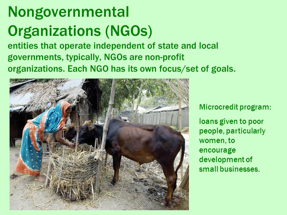 Nongovernmental Organizations (NGOs) entities that operate independent of state and local governments, typically, NGOs are non-profit organizations.