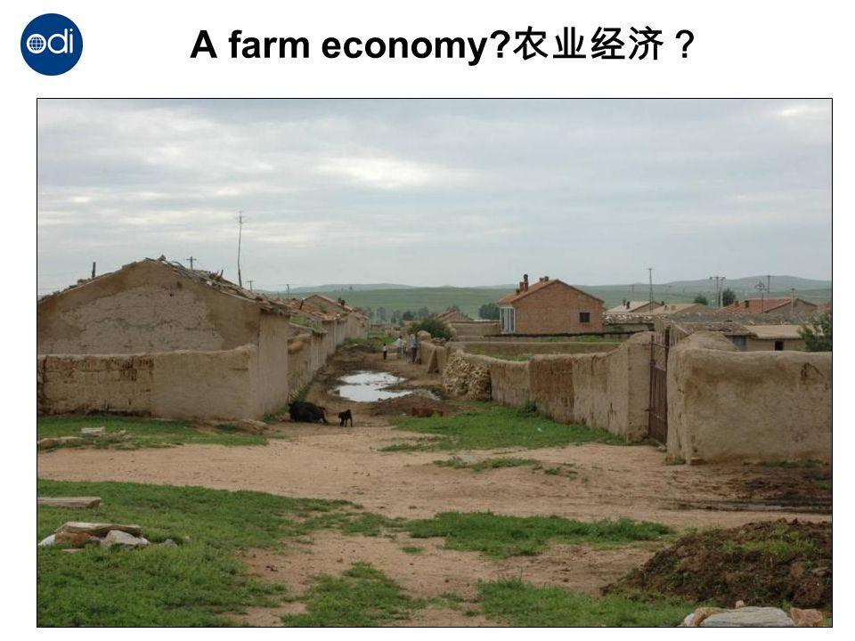 A farm economy? 农业经济?