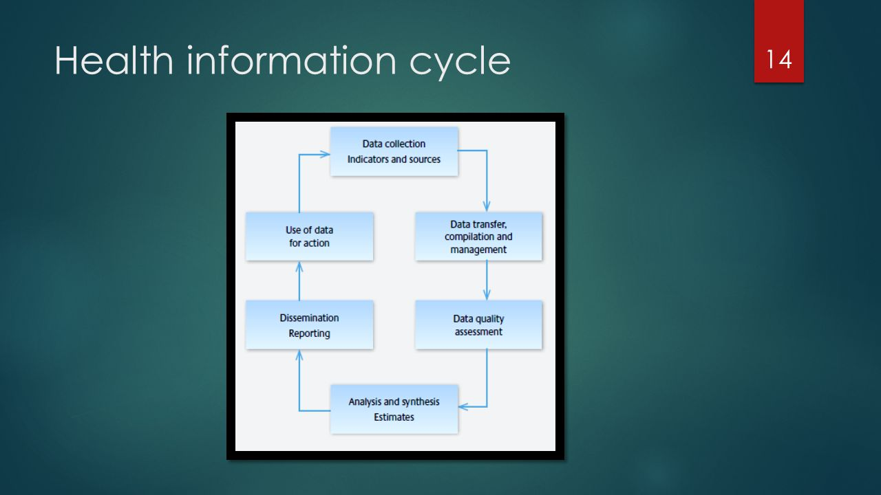 Health information cycle 14