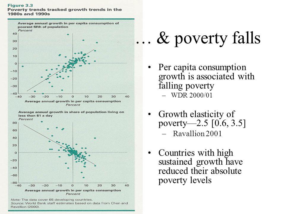 Source: Winters 2005, World Bank Poverty Course Heterogeneity across countries