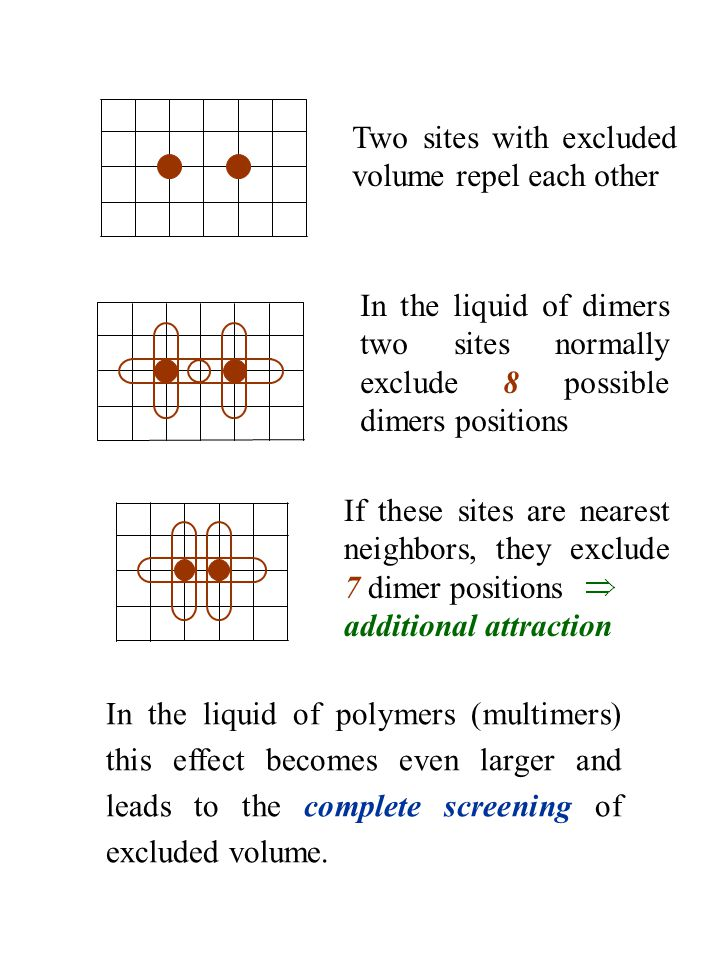 In the liquid of polymers (multimers) this effect becomes even larger and leads to the complete screening of excluded volume. Two sites with excluded