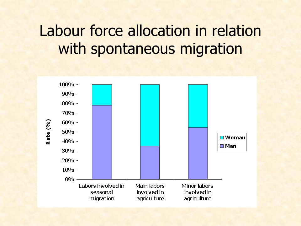 Labour force allocation in relation with spontaneous migration