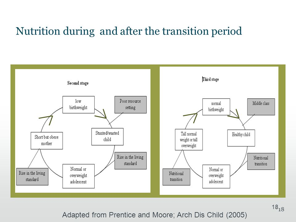 18 Nutrition during and after the transition period Adapted from Prentice and Moore; Arch Dis Child (2005)