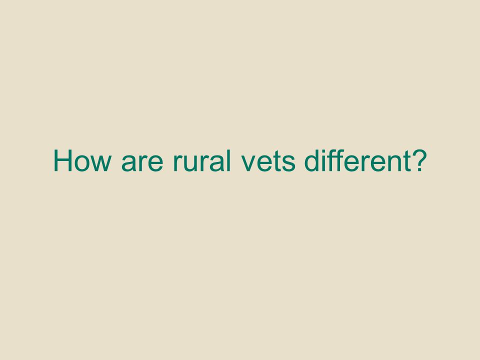 How are rural vets different?