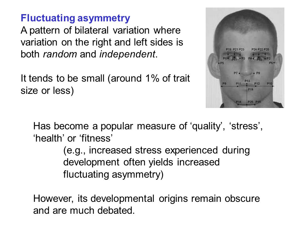Has become a popular measure of 'quality', 'stress', 'health' or 'fitness' (e.g., increased stress experienced during development often yields increased fluctuating asymmetry) However, its developmental origins remain obscure and are much debated.