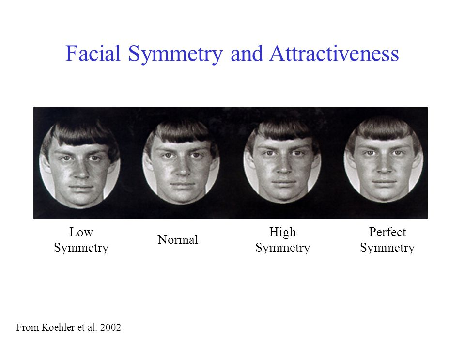 Facial Symmetry and Attractiveness Evaluating original images and computer- generated composite images, participants rated faces in terms of attractiveness, dominance, sexiness and health.